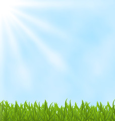 Summer background with green field and sky