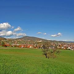 WEIZ ( Oststeiermark ) - Stadtpanorama