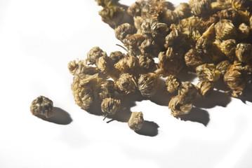Dried Chrysanthemum flower