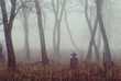 Spooky cemetery in the forest - 71677222