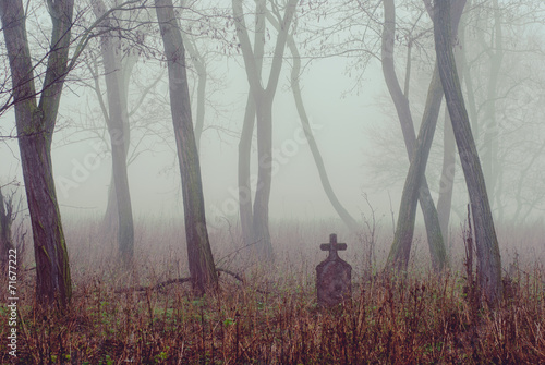 Fotobehang Begraafplaats Spooky cemetery in the forest