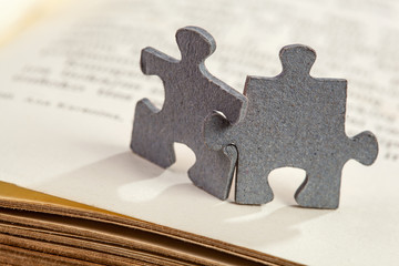 Closeup of two jigsaw puzzle pieces on book page