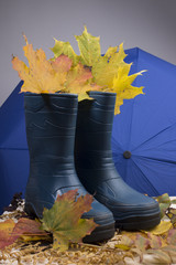Blue rubber boots,blue umbrella and autumn leaves