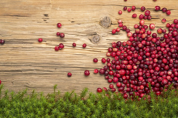 Cranberries on rustic board and moss.
