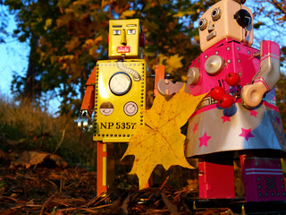 Robot couple in the autumn forest