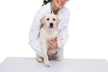 Veterinarian doing check up at a dog