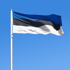 Wehende Flagge von Estland