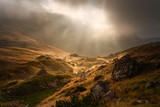 Dramatic fogy landscape with sunbeams