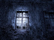 Spooky window - 71684866