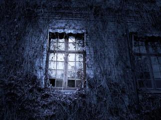 Spooky window