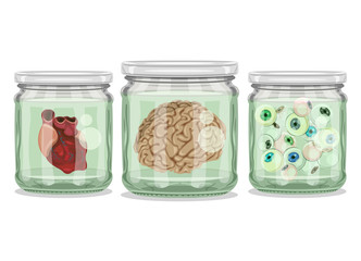 Organs in Jars - Brain, Heart and Eyeballs