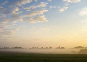 wieś i pole spowite w porannej mgle