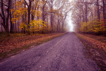 Highway early misty autumn morning