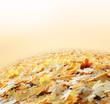 Obrazy na płótnie, fototapety, zdjęcia, fotoobrazy drukowane : The land of autumn leaves. Abstraction