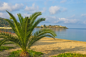 Palms on a sandy beach, old roman fortress in background