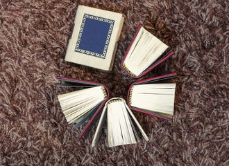Small mini books