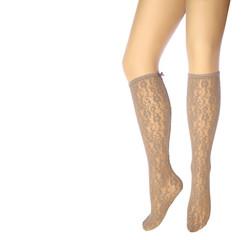 Woman's legs in stockings