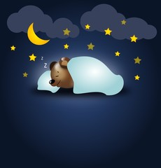 Bear night