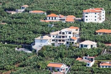 Aerial view at houses and banana plantations at Madeira Island