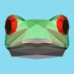 polygonal frog