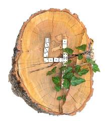 Rustic Wooden Alphabet