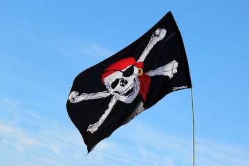 Drapeau des pirates