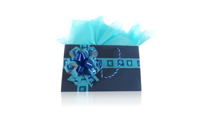 Blue Decorated Gift Bag Dolly