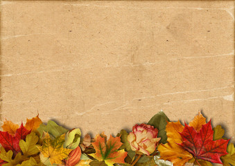 Vintage autumn beautiful background