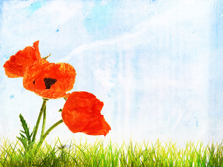 Grunge summer background with bright poppy flowers, vintage pape