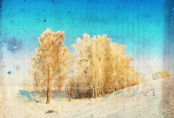 Grunge winter background with birch trees, vintage paper texture