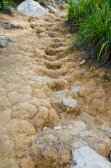 Dried Mud Steps - Muddy clay naturally carved into steps