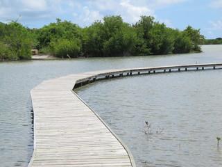Les Salines - Le lagon - Martinique