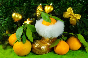 Mandarines next to Christmas tree