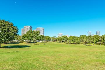 Landscape grass prospects the condominiums of landmark