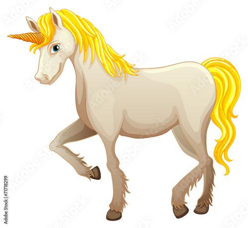 Poster Pony Unicorn