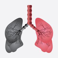 lungs design