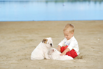 The little boy plays on a beach with a puppy of breed the boxer
