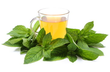 Fresh green mint and cup of beverage. White background