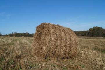 Стог соломы круглой формы лежит на поле после уборки зерновых