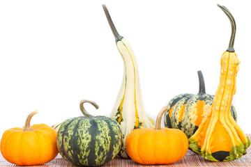 Variety of pumkins isolated on white background