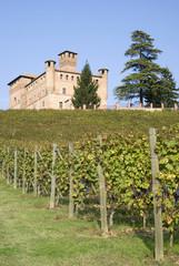 Castle of Grinzane Cavour in Piedmont region of Italy