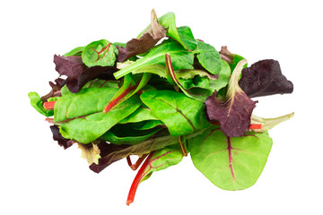 Mixed salad red leaf, baby spinach & red chard