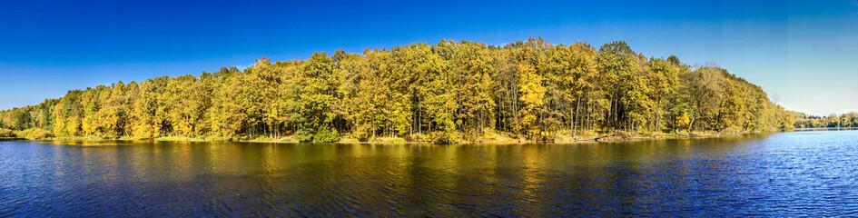 Thoughtful Autumn surface.