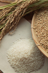 稲穂と籾と白米