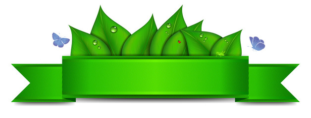 Green Banner with Copy Space
