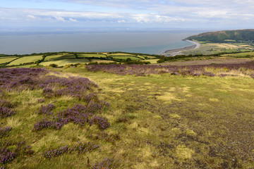 moor landscape and Bristol channel coastline, Exmoor