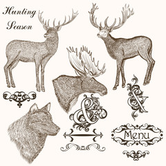 Collection of vector hand drawn animals for hunting season desig