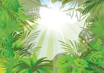 lighting jungle background ,vector