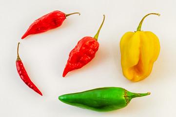 still life of chili