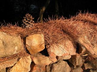 muro aghi e pigna